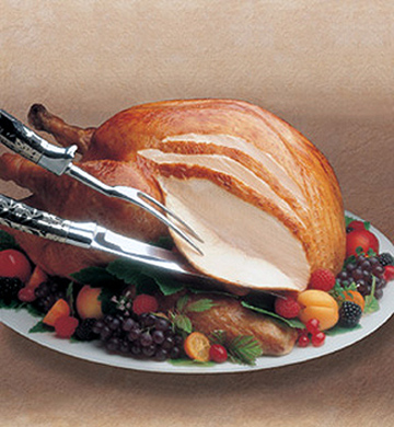 a image of a turkey. No matter how you slice it, a turkey is a turkey, is a turkey (Click here to